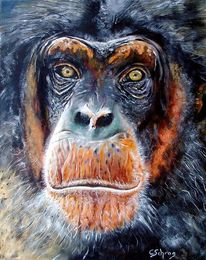 Ölmalerei, Schimpanse, Portrait, Alter