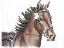 Tierportrait, Aquarellmalerei, Pferde, Malerei