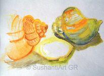 Natur, Aquarellmalerei, Muschel, Aquarell