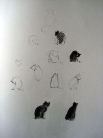 Katze skizze bleistift, Zeichnungen
