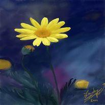 Blumenwiese, Nacht, Malerei, Blumen