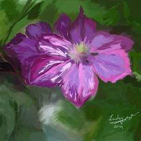 Clematis, Garten, Malerei, Blumen