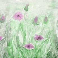 Distel, Junge, Blumen