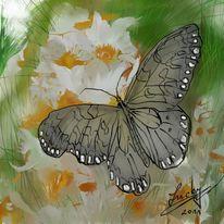Schmetterling, Kraft, Malerei