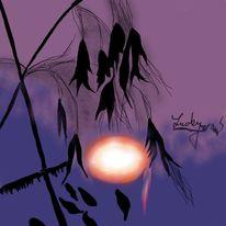Sonnenuntergang, Malerei, Digitale malerei, 007