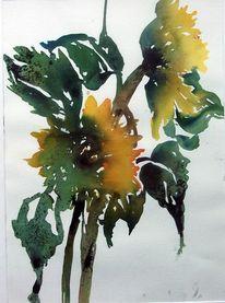 Tusche, Aquarellmalerei, Aquarell, Pflanzen