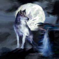 Digital, Wolf, Tiere, Digitale kunst