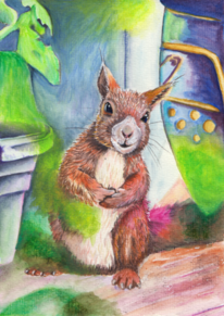 Wildtier, Eichhörnchen, Frech, Tiere