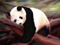 Tiere, Malerei, Panda