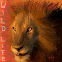 Wild, Life8, Tiere, Löwe