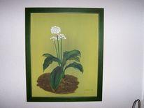 Kraut, Frühling, Grün, Blüte