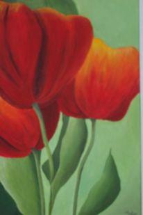 Grün, Tulpen, Sonne, Blätter