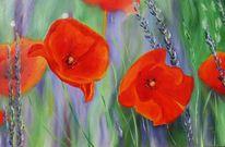 Blauer lavendel, Grosse mohnblumen, Malerei, Pflanzen