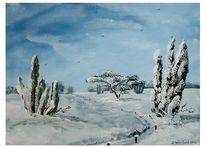 Winter, Kiefer, Himmel, Blau