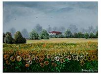 Sonnenblumen, Blüte, Haus, Baum