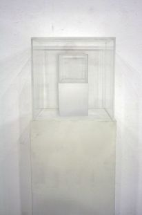 Plexiglas, Pedestal, Kasten, Mixed media