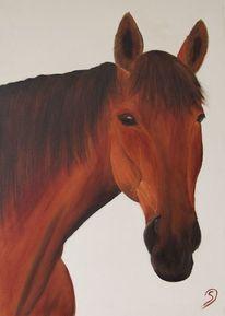Ölmalerei, Tiere pferd, Malerei