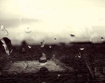 Wasser, Tropfen, Regen, Natur