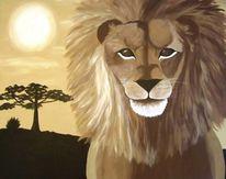 Nachmittag, Löwe, Afrika, Sonne