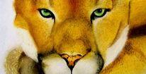 Raubtier, Puma, Wildkatze, Malerei