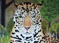 Dämmerung, Sonne, Leopard, Katze