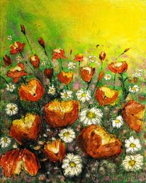 Pflanzen, Blüte, Blumenwiese, Sommer