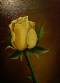 Mhentsch, Gelbe rose, Rose, Stillleben