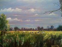 Himmel, Landschaft, Weide, Kuh