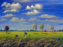 Himmel, Landschaft, Birken, Wolken