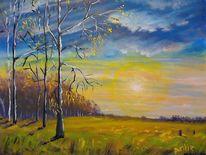 Marsch, Sonnenaufgang, Landschaft, Sonne
