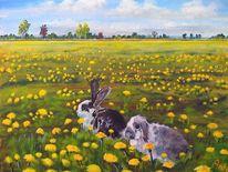Natur, Wiese, Landschaft, Kaninchen