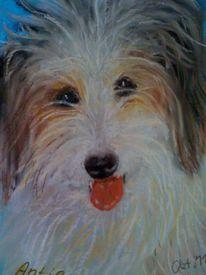 Pastellmalerei, Hund, Tierportrait, Zeichnungen