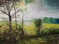 Baum, Grün, Landschaft, Feld