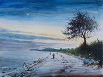 Abend, Baum, Küste, Sonnenuntergang