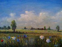 Landschaft, Wiese, Blumen, Natur