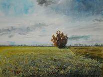 Natur, Feld, Wolken, Weite