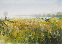 Weide, Kuh, Natur, Wiese