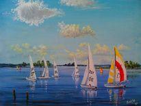 Gewässer, Regatta, Segelboot, Natur