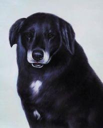 Hund, Auftragsmalerei, Porträtmalerei, Auftragsarbeit