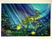 Corals, Fischschwarm, Doktorfisch, Pflanzen