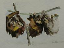Tiere, Aquarellmalerei, Affe, Aquarell