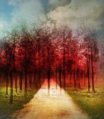 Baum, Farben, Rot, Spüren