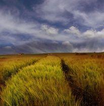 Landschaft, Grün, Fotografie, Heimweg