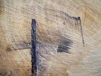 Baum, Modern, Gefällte, Struktur