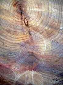 Ästhetik, Struktur, Baum,