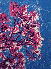 Magnolien, Frühling, Schablone, Blüte