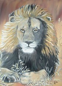 Löwe, Ölmalerei, 2011, Kraft
