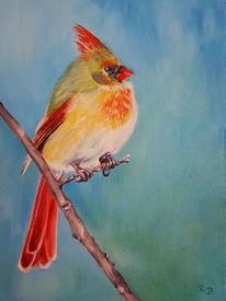 Tiere, Vogel, Malerei, Tiermalerei