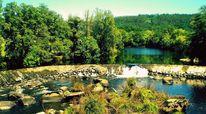 Natur, Wasser, Grün, Wassersprung