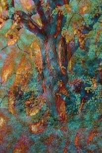 Magie, Farben, Wald, Bunt